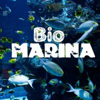 Bio Marina