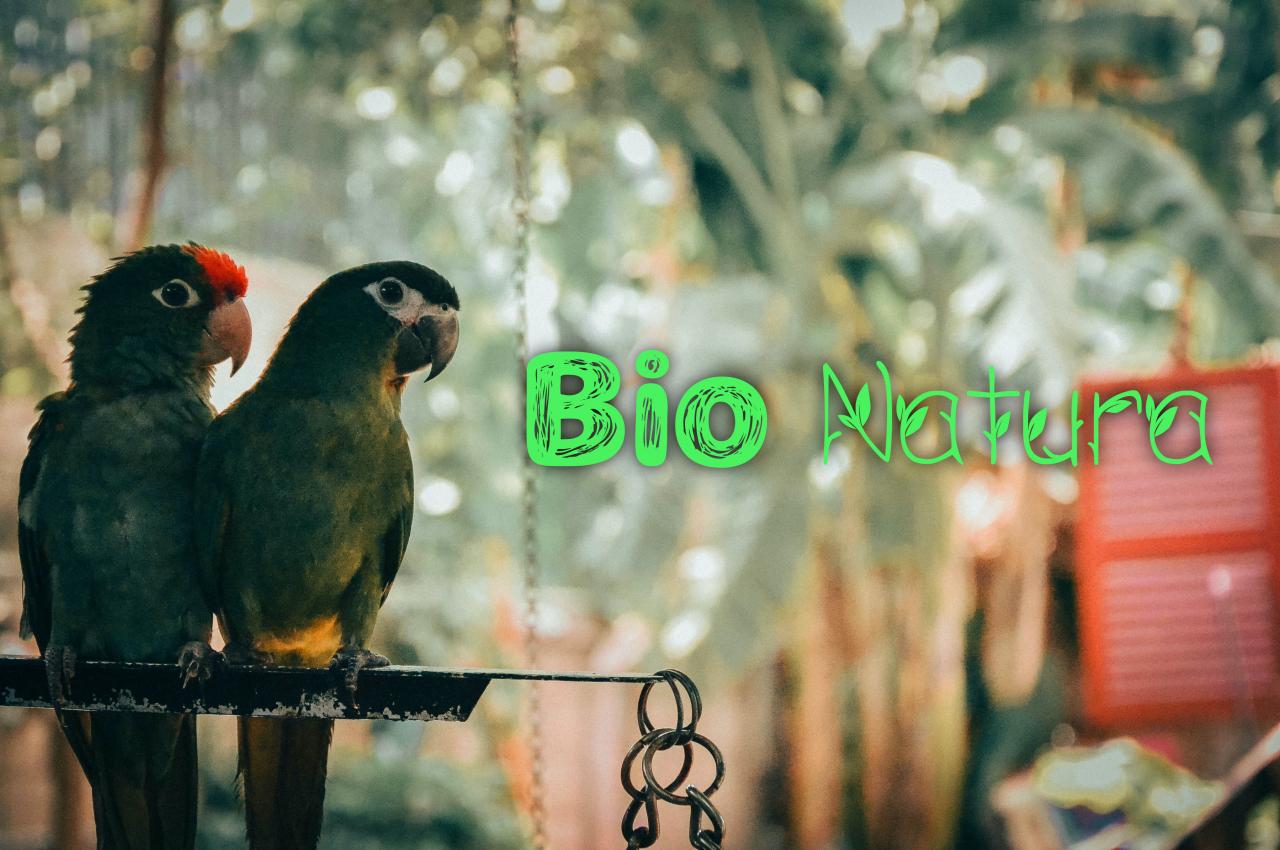BioNatura.jpg