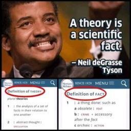 Una teoria scientifica è un fatto